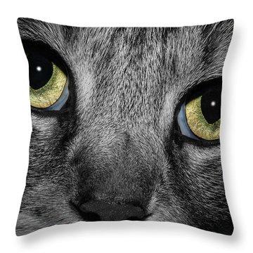In A Cats Eye Throw Pillow