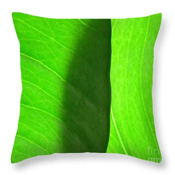 In Passing Light Throw Pillow by CML Brown