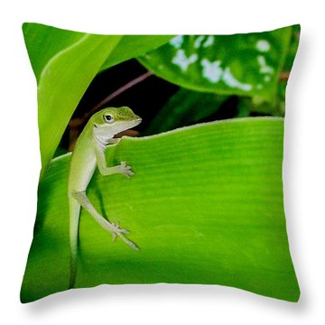 It's Easy Being Green Throw Pillow by TK Goforth