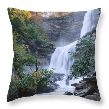 Kaaterskill Falls Square Throw Pillow
