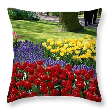 Keukenhof Garden, Lisse, The Netherlands Throw Pillow by Panoramic Images