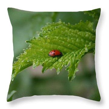 Ladybug Throw Pillow by Ellen Henneke