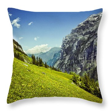 Throw Pillow featuring the photograph Lauterbrunnen Valley In Bloom by Jeff Goulden