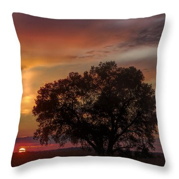 Light Pillar And Cottonwood Throw Pillow by Rob Graham