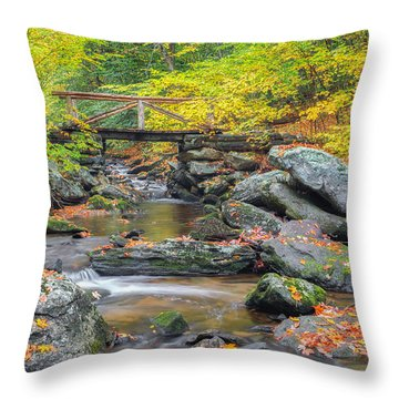 Throw Pillow featuring the photograph Macedonia Brook by Bill Wakeley