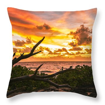 Makapuu Sunrise 4 Throw Pillow by Leigh Anne Meeks