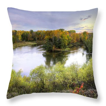 Manistee National Forest Throw Pillows
