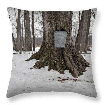 Maple Sugaring Throw Pillow