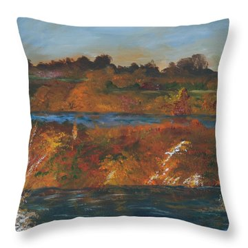 Mendota Slough Throw Pillow