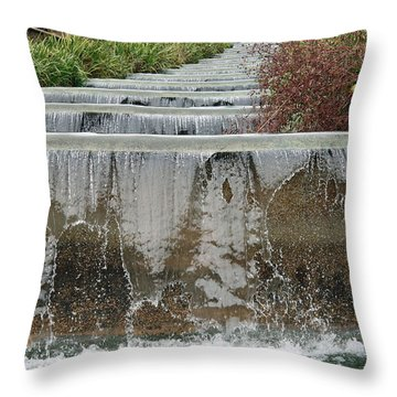 Meridian Hill Park Throw Pillow by Cora Wandel