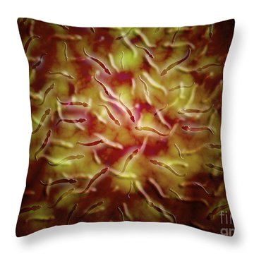 Microscopic View Of Sperm Throw Pillow by Stocktrek Images