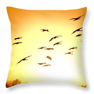 Migration Throw Pillow by Alexey Stiop
