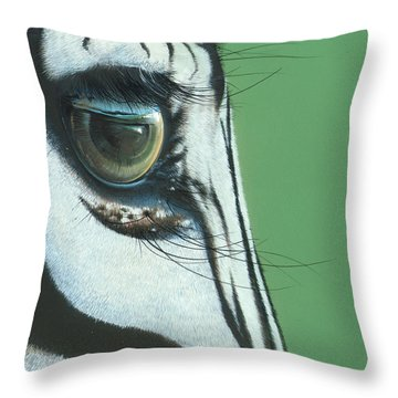 Mirror To The Soul Throw Pillow