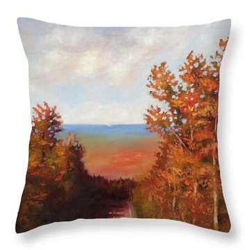 Mountain View Throw Pillow by Jason Williamson