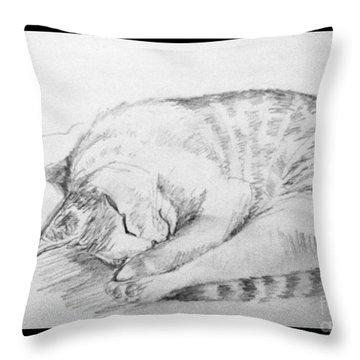 My Pet Cat Throw Pillow