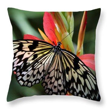 Nature's Treasures  Throw Pillow by Saija  Lehtonen