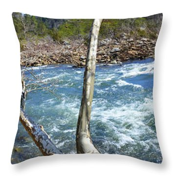 Throw Pillow featuring the photograph Nemo Rapids by Paul Mashburn