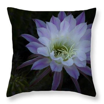 Night Blooming Cactus  Throw Pillow