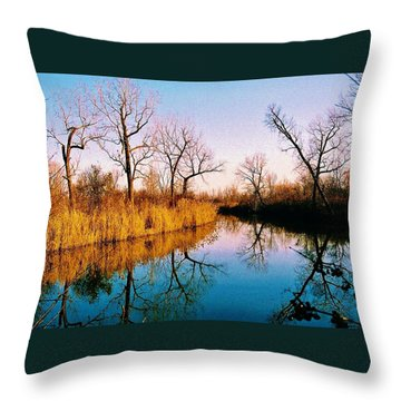 Throw Pillow featuring the photograph November by Daniel Thompson