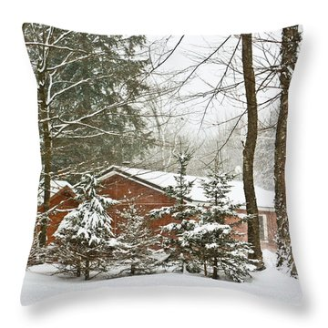 Throw Pillow featuring the photograph One Snowy Day  by Ann Murphy