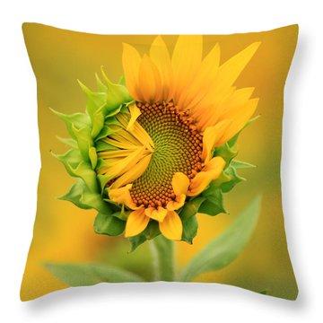 Opening Sunflower Throw Pillow
