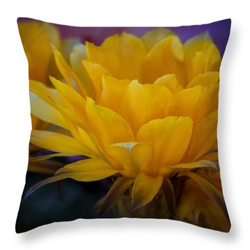 Orange Cactus Flowers  Throw Pillow