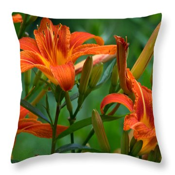 Throw Pillow featuring the photograph Orange Lilly by Cathy Shiflett