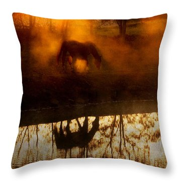 Throw Pillow featuring the photograph Orange Mist by Joan Davis