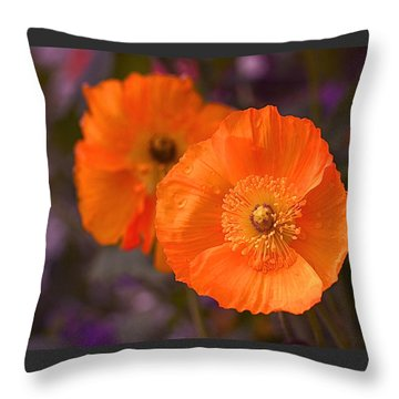 Orange Poppies Throw Pillow by Rona Black
