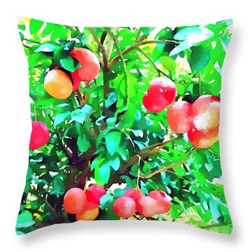 Orange Trees With Fruits On Plantation Throw Pillow by Lanjee Chee
