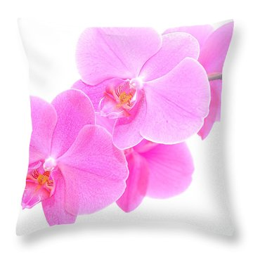 Orchid Isolated Throw Pillow by Michal Bednarek