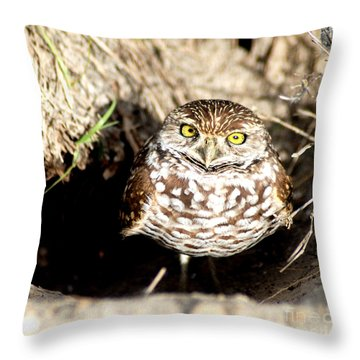 Throw Pillow featuring the photograph Owl by Oksana Semenchenko