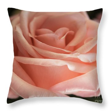 Perfectly Peachy Throw Pillow by Arlene Carmel