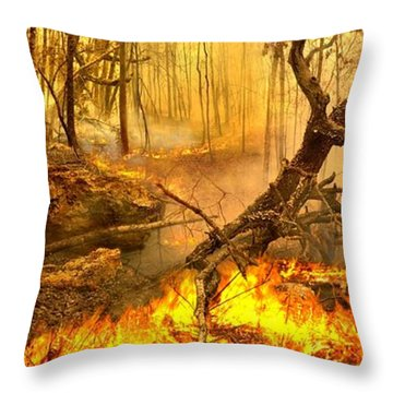2 Peter 3 10 Throw Pillow by Bill Stephens