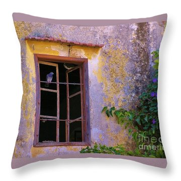Pigeons And Morning Glories Throw Pillow by Michele Penner