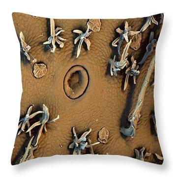 Nepenthes Throw Pillows