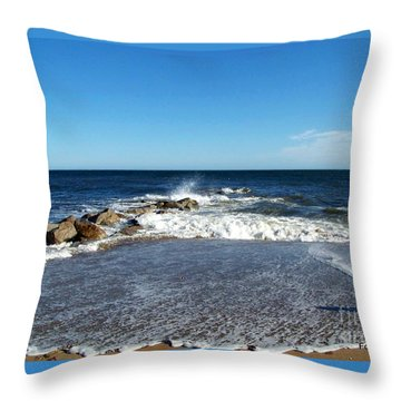 Throw Pillow featuring the photograph Plum Island Landscape by Eunice Miller