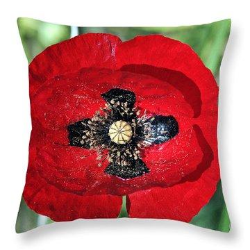 Poppy Flower Throw Pillow by George Atsametakis