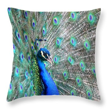 Throw Pillow featuring the photograph Proud by Deena Stoddard