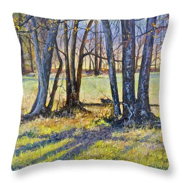 Quiet Afternoon Sunset Throw Pillow