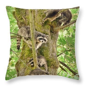 Raccoon Family Throw Pillow