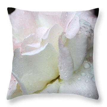 Rain Washed Throw Pillow