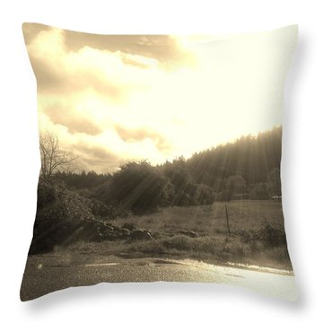 Ray Throw Pillow