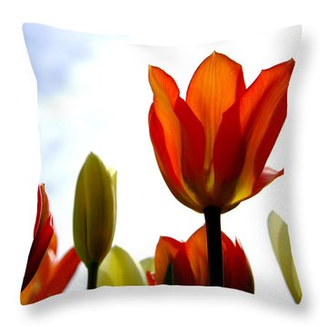 Throw Pillow featuring the photograph Reaching For The Sun by Marilyn Wilson