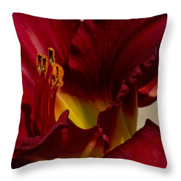 Throw Pillow featuring the photograph Red Lily by Ivete Basso Photography