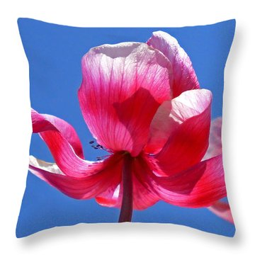 Red White And Blue Throw Pillow by Rona Black
