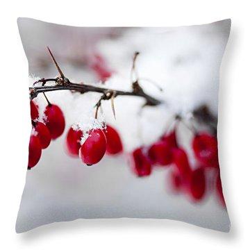 Red Winter Berries Under Snow Throw Pillow by Elena Elisseeva