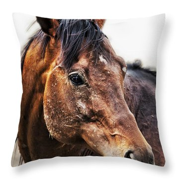 Throw Pillow featuring the photograph Resilience by Belinda Greb