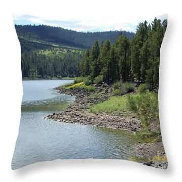 River Reservoir Throw Pillow by Pamela Walrath