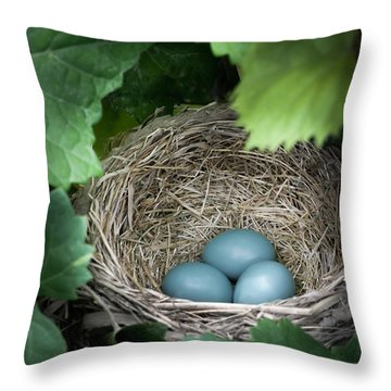 Robin Egg Blues Throw Pillow by James Barber